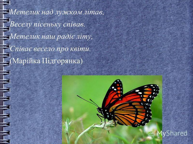 Метелик над лужком літав, Веселу пісеньку співав. Метелик наш радіє літу, Співає весело про квіти. (Марійка Підгорянка)