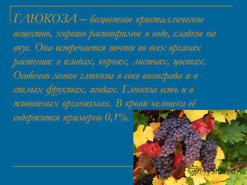 ГЛЮКОЗА – бесцветное кристаллическое вещество, хорошо растворимое в воде, сладкое на вкус. Она встречается почти во всех органах растения: в плодах, корнях, листьях, цветах. Особенно много глюкозы в соке винограда и в спелых фруктах, ягодах. Глюкоза