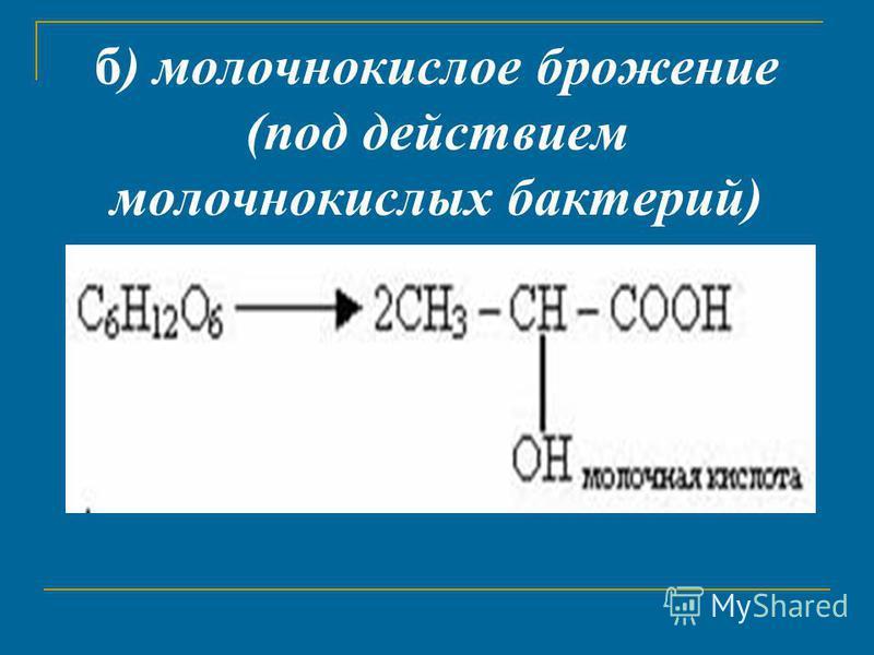 б) молочнокислое брожение (под действием молочнокислых бактерий)