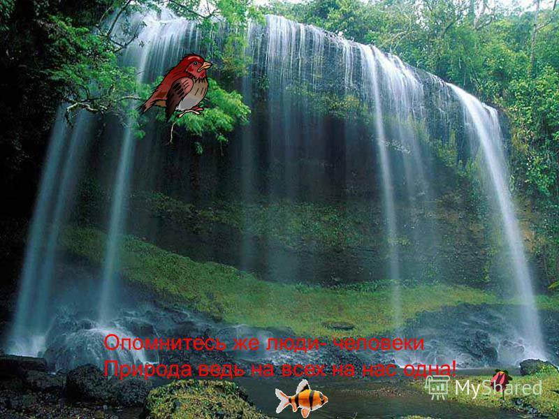 Опомнитесь же люди- человеки Природа ведь на всех на нас одна!