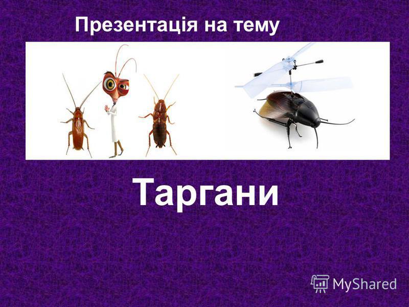 Презентація на тему Таргани