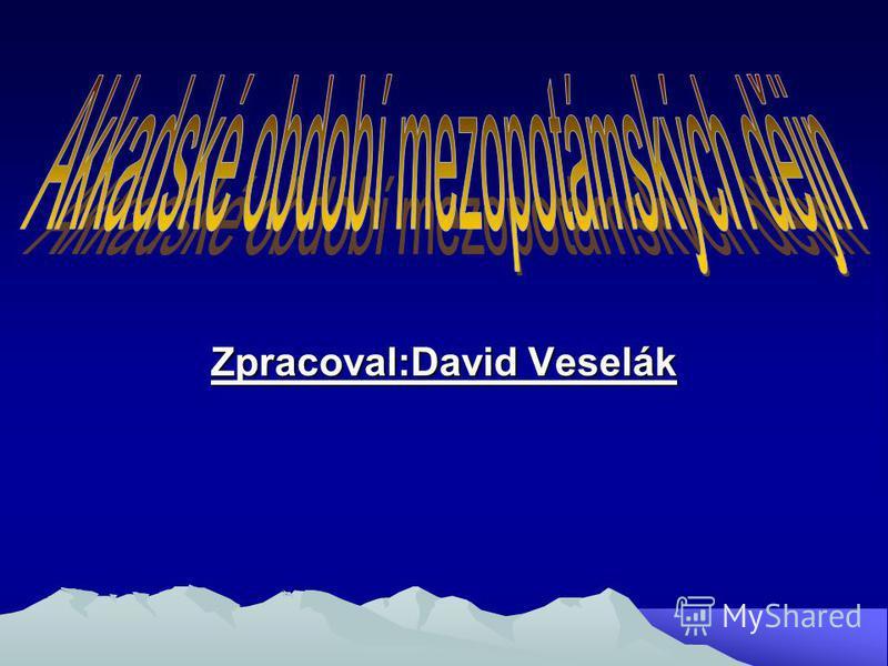 Zpracoval:David Veselák