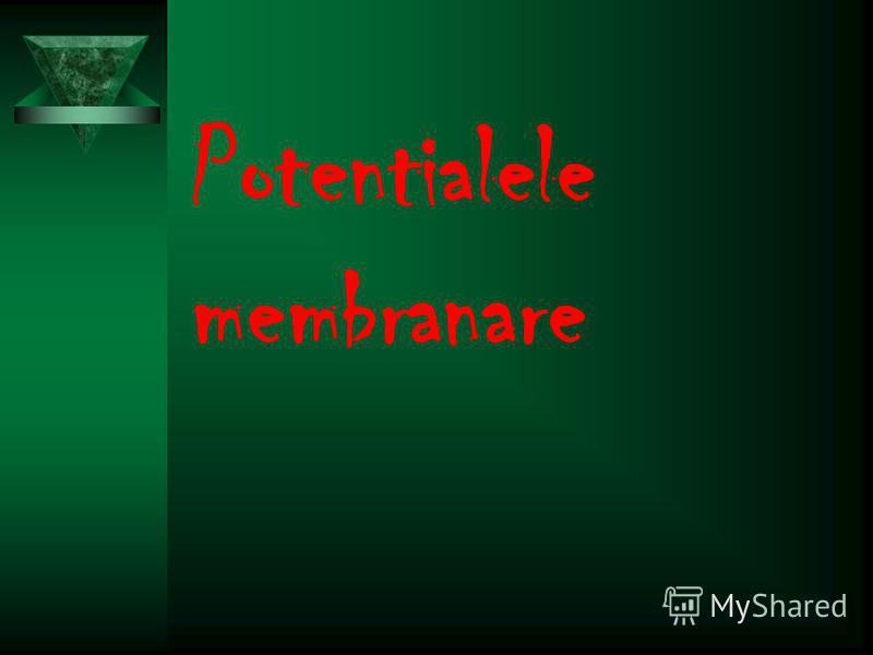 Potentialele membranare