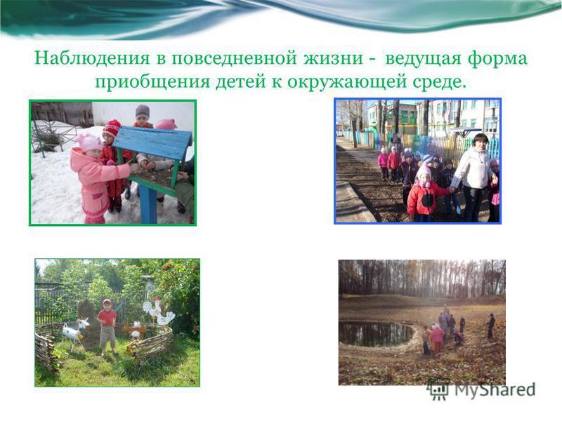 Наблюдения в повседневной жизни - ведущая форма приобщения детей к окружающей среде.