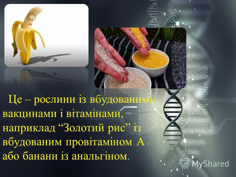 Це – рослини із вбудованими вакцинами і вітамінами, наприклад Золотий рис із вбудованим провітаміном А або банани із анальгіном.