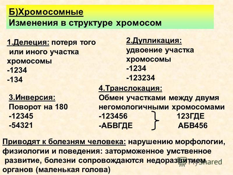 Б)Хромосомные Изменения в структуре хромосом 1.Делеция: потеря того или иного участка хромосомы -1234 -134 2.Дупликация: удвоение участка хромосомы -1234 -123234 3.Инверсия: Поворот на 180 -12345 -54321 4.Транслокация: Обмен участками между двумя нег