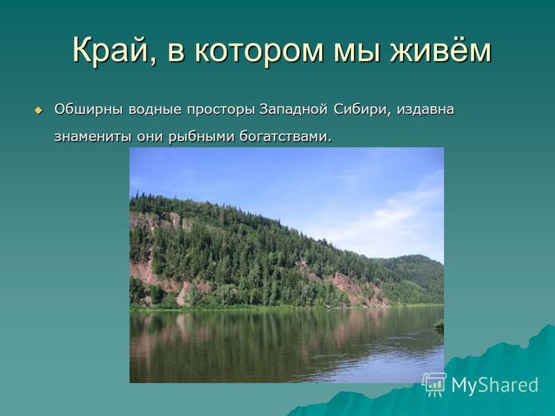 Край, в котором мы живём Обширны водные просторы Западной Сибири, издавна знамениты они рыбными богатствами. Обширны водные просторы Западной Сибири, издавна знамениты они рыбными богатствами.