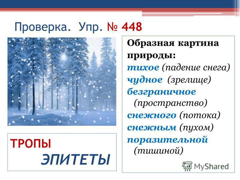 Образная картина природы: тихое (падение снега) чудное (зрелище) безграничное (пространство) снежного (потока) снежным (пухом) поразительной (тишиной) Проверка. Упр. 448 ТРОПЫ ЭПИТЕТЫ