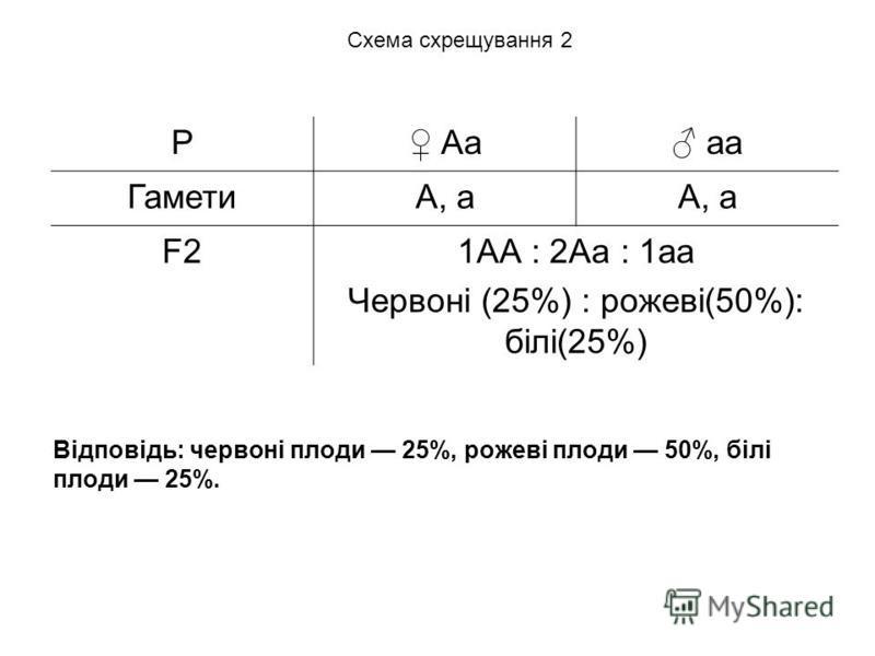 Відповідь: червоні плоди 25%, рожеві плоди 50%, білі плоди 25%. P Aа аa ГаметиA, аА, a F2F21АА : 2Аа : 1аа Червоні (25%) : рожеві(50%): білі(25%) Схема схрещування 2