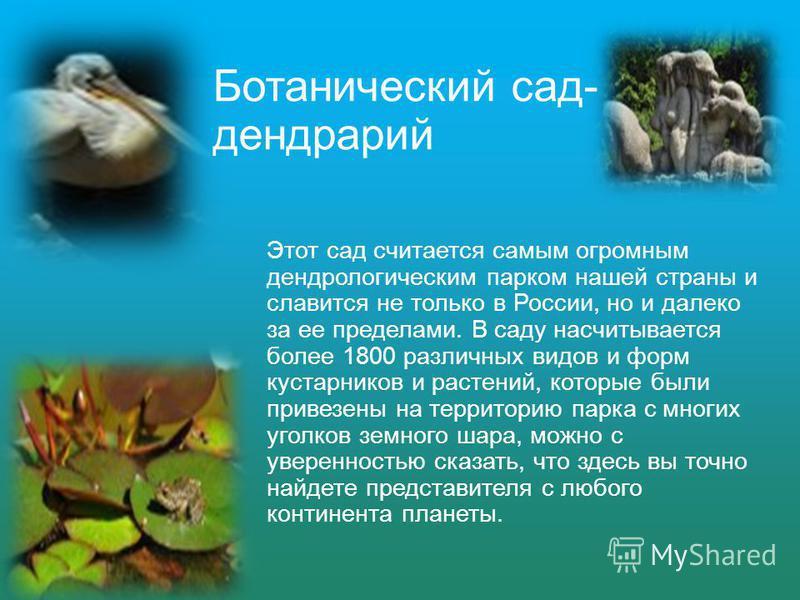 Ботанический сад- дендрарий Этот сад считается самым огромным дендрологическим парком нашей страны и славится не только в России, но и далеко за ее пределами. В саду насчитывается более 1800 различных видов и форм кустарников и растений, которые были