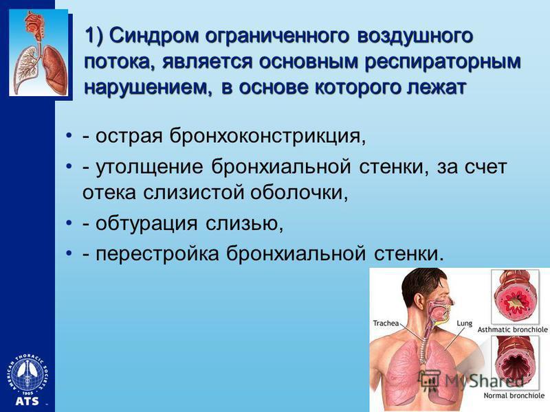 1) Синдром ограниченного воздушного потока, является основным респираторным нарушением, в основе которого лежат - острая бронхоконстрикция, - утолщение бронхиальной стенки, за счет отека слизистой оболочки, - обтурация слизью, - перестройка бронхиаль