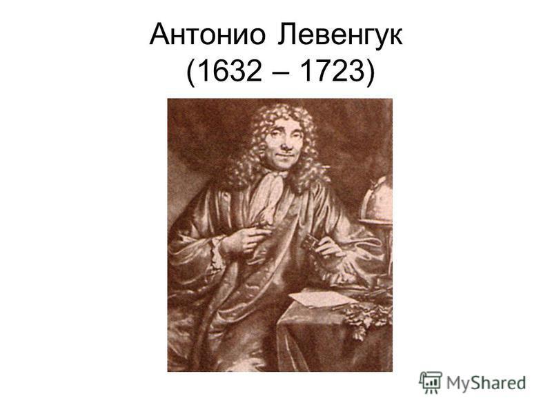 Антонио Левенгук (1632 – 1723)
