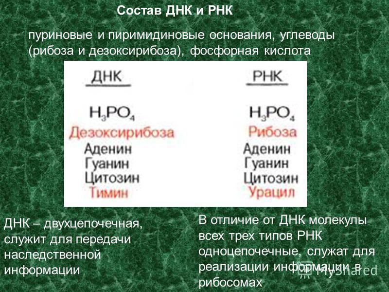 Сборник задач по физике 8 класс жолнеревич исаченкова скобля
