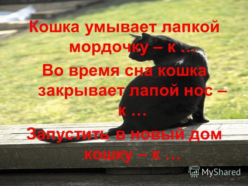 Кошка умывает лапкой мордочку – к … Во время сна кошка закрывает лапой нос – к … Запустить в новый дом кошку – к …