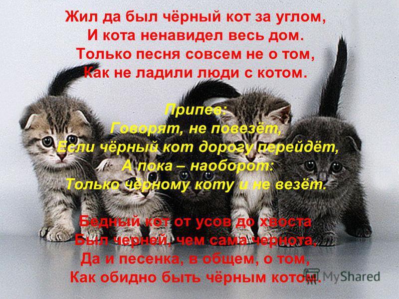 Жил да был чёрный кот за углом, И кота ненавидел весь дом. Только песня совсем не о том, Как не ладили люди с котом. Припев: Говорят, не повезёт, Если чёрный кот дорогу перейдёт, А пока – наоборот: Только чёрному коту и не везёт. Бедный кот от усов д