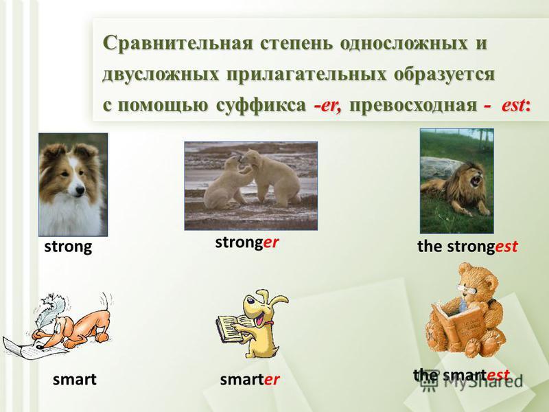 Прилагательные в английском языке не изменяются по числам и падежам, но, как и в русском языке имеют положительную, сравнительную и превосходную степени сравнения положительную, сравнительную и превосходную степени сравнения big bigger The biggest