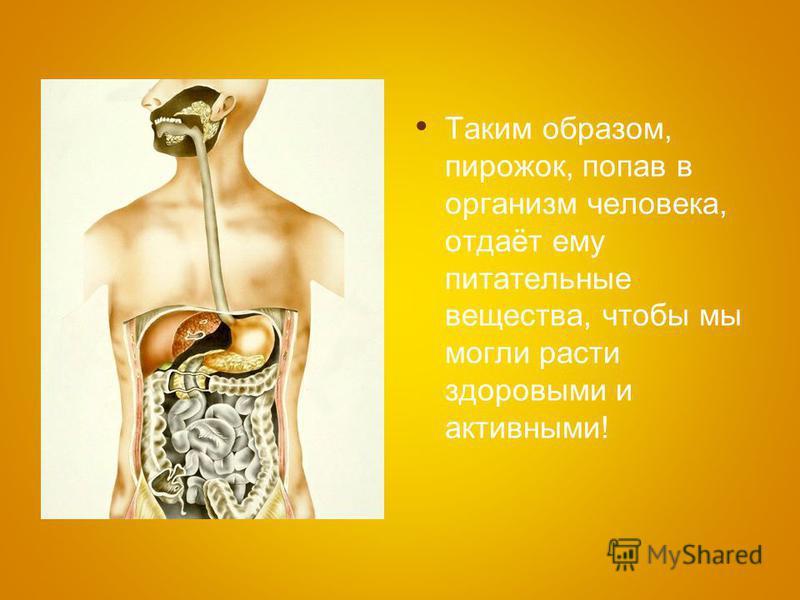 Таким образом, пирожок, попав в организм человека, отдаёт ему питательные вещества, чтобы мы могли расти здоровыми и активными!