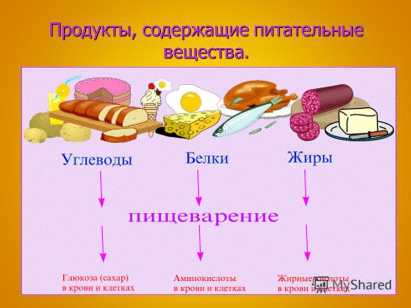 Продукты, содержащие питательные вещества.