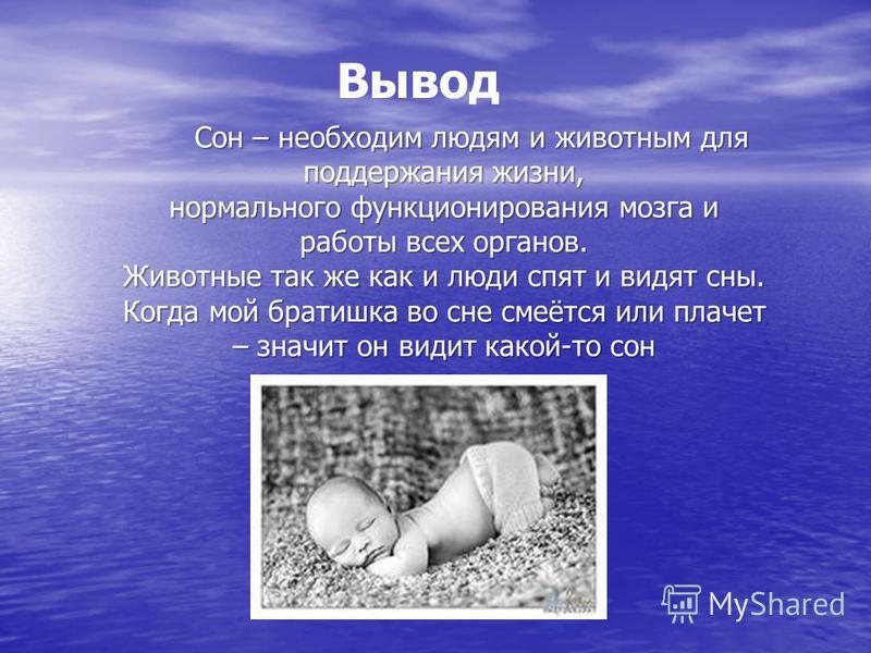 Вывод Сон – необходим людям и животным для поддержания жизни, нормального функционирования мозга и работы всех органов. Животные так же как и люди спят и видят сны. Когда мой братишка во сне смеётся или плачет – значит он видит какой-то сон