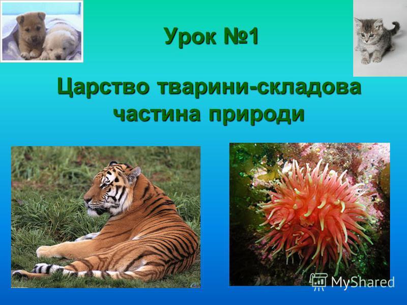 Царство тварини-складова частина природи Урок 1