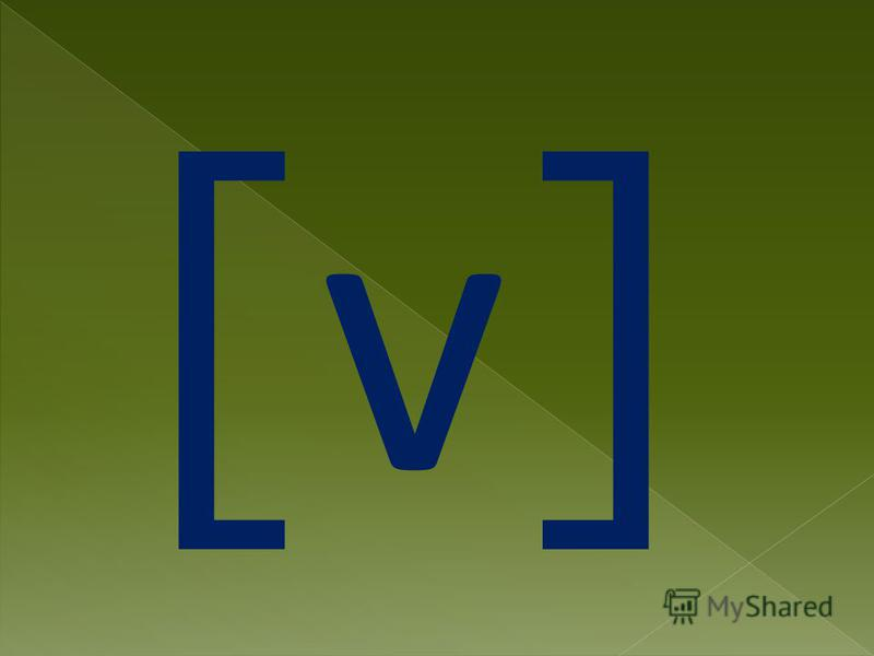 [ v ]