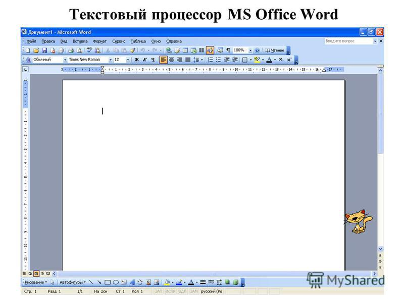 Текстовый процессор MS Office Word