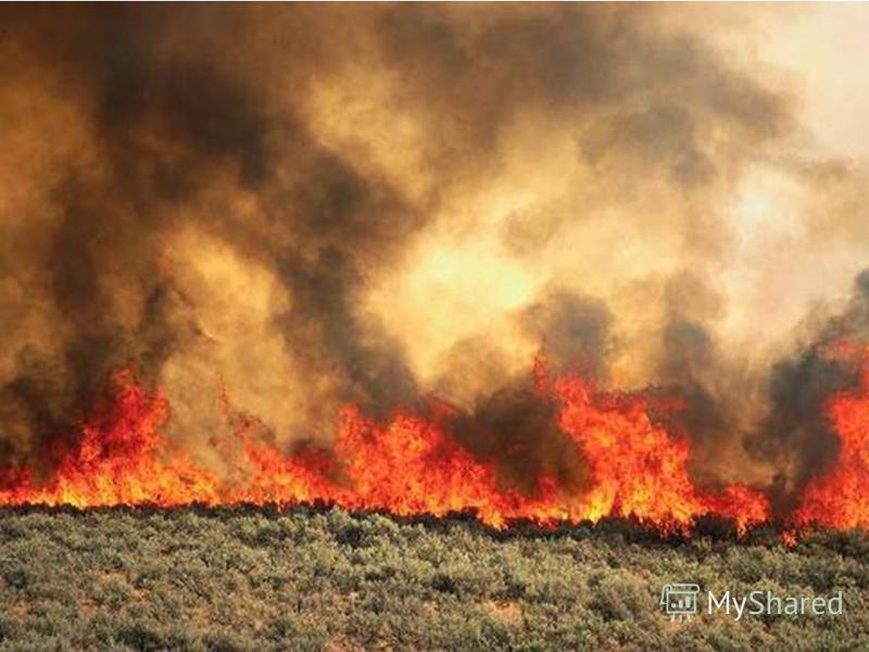 Огонь - наш друг, но не всегда – бывает от него беда!