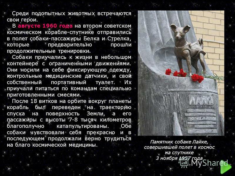 Памятник собаке Лайке, совершившей полет в космос на спутнике 3 ноября 1957 года Среди подопытных животных встречаются свои герои. В августе 1960 года на втором советском космическом корабле-спутнике отправились в полет собаки-пассажиры Белка и Стрел