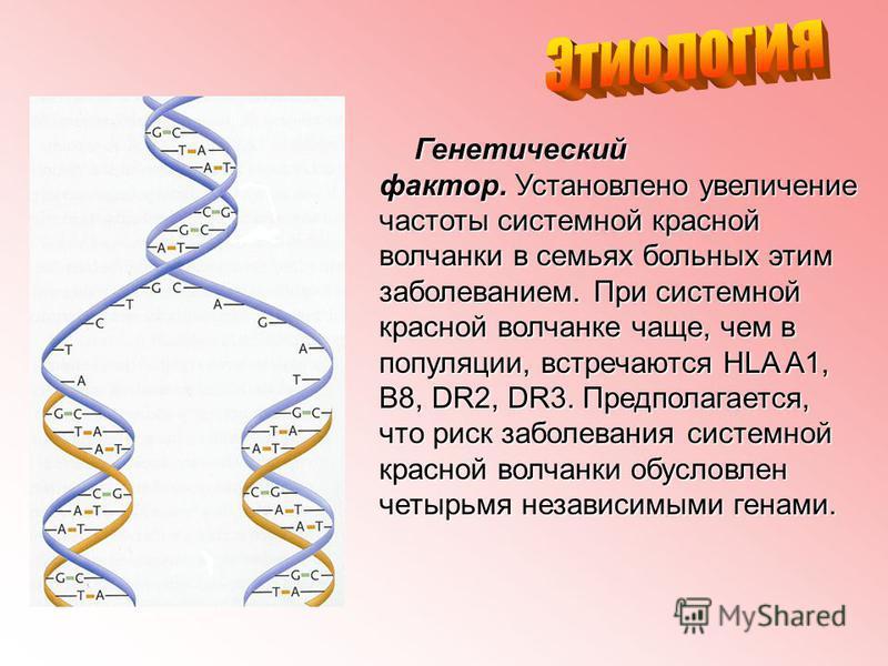 Генетический фактор. Установлено увеличение частоты системной красной волчанки в семьях больных этим заболеванием. При системной красной волчанке чаще, чем в популяции, встречаются HLA A1, B8, DR2, DR3. Предполагается, что риск заболевания системной