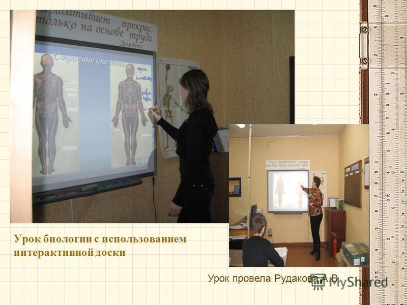 Урок биологии с использованием интерактивной доски Урок провела Рудакова А.В.