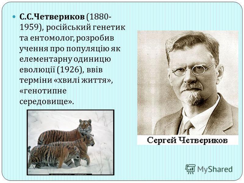 С. С. Четвериков (1880- 1959), російський генетик та ентомолог, розробив учення про популяцію як елементарну одиницю еволюції (1926), ввів терміни « хвилі життя », « генотипне середовище ».