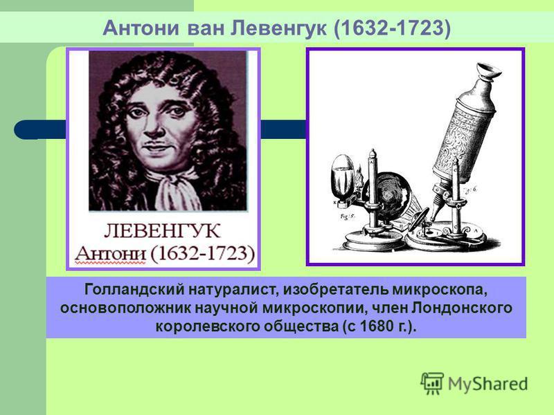 Антони ван Левенгук (1632-1723) Голландский натуралист, изобретатель микроскопа, основоположник научной микроскопии, член Лондонского королевского общества (с 1680 г.).