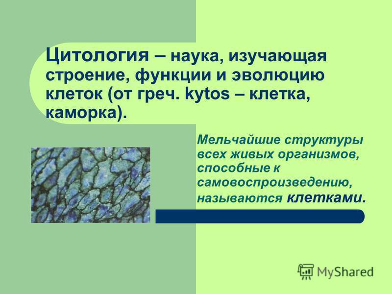 Цитология – наука, изучающая строение, функции и эволюцию клеток (от греч. kytos – клетка, каморка). Мельчайшие структуры всех живых организмов, способные к самовоспроизведению, называются клетками.