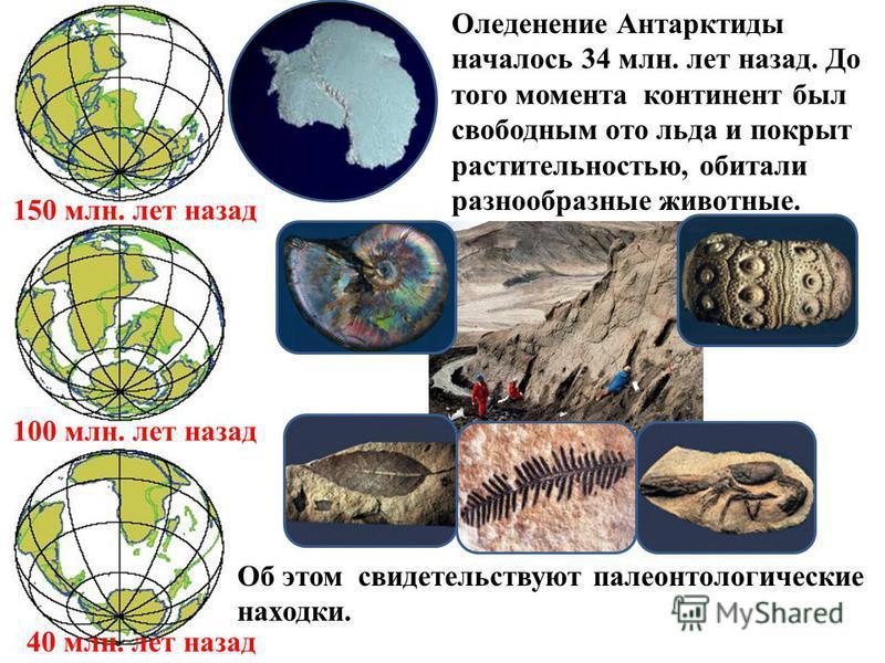 150 млн. лет назад 100 млн. лет назад 40 млн. лет назад Оледенение Антарктиды началось 34 млн. лет назад. До того момента континент был свободным ото льда и покрыт растительностью, обитали разнообразные животные. Об этом свидетельствуют палеонтологич
