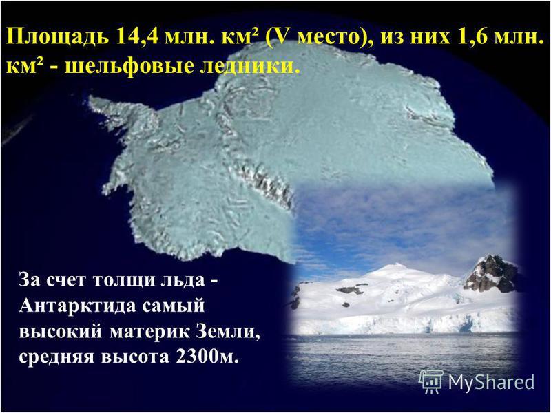 За счет толщи льда - Антарктида самый высокий материк Земли, средняя высота 2300 м. Площадь 14,4 млн. км² (V место), из них 1,6 млн. км² - шельфовые ледники.