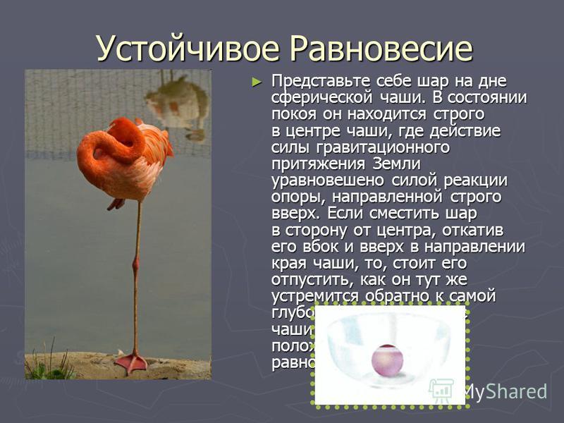 Устойчивое Равновесие Представьте себе шар на дне сферической чаши. В состоянии покоя он находится строго в центре чаши, где действие силы гравитационного притяжения Земли уравновешено силой реакции опоры, направленной строго вверх. Если сместить шар