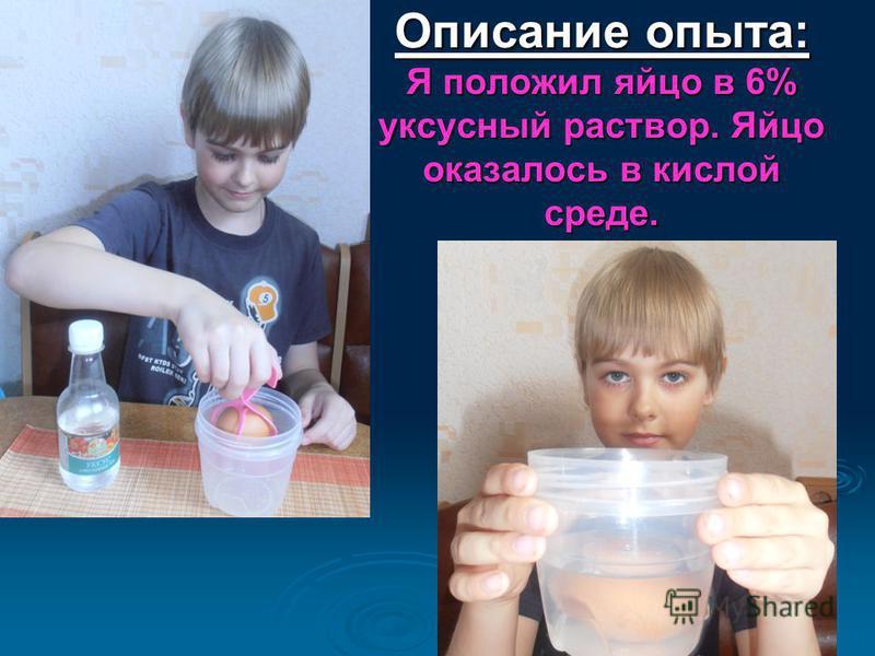 Описание опыта: Я положил яйцо в 6% уксусный раствор. Яйцо оказалось в кислой среде. Описание опыта: Я положил яйцо в 6% уксусный раствор. Яйцо оказалось в кислой среде.