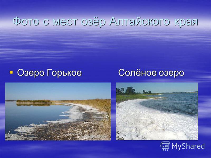 Фото с мест озёр Алтайского края Озеро Горькое Солёное озеро Озеро Горькое Солёное озеро