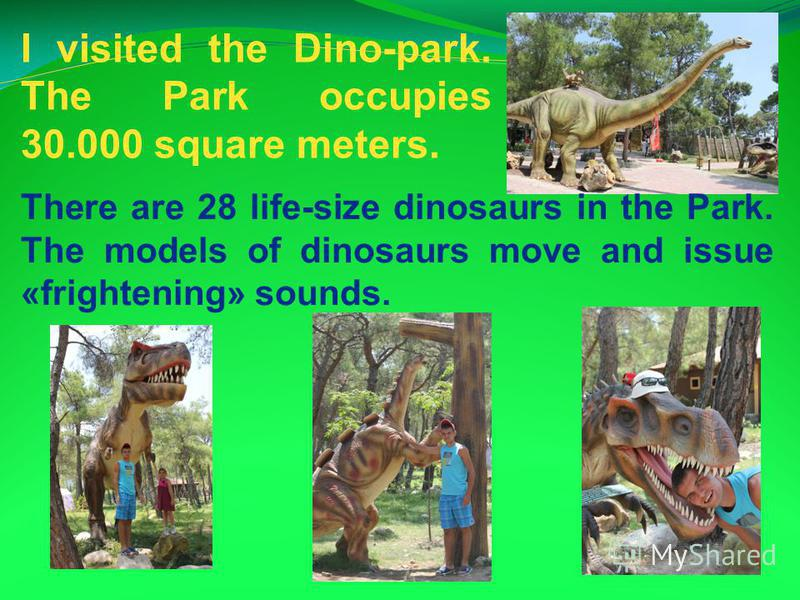 I visited the Dino-park. The Park occupies 30.000 square meters. There are 28 life-size dinosaurs in the Park. The models of dinosaurs move and issue «frightening» sounds.