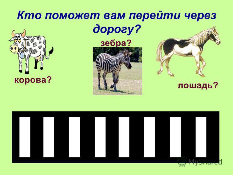 Кто поможет вам перейти через дорогу? корова? лошадь? зебра?
