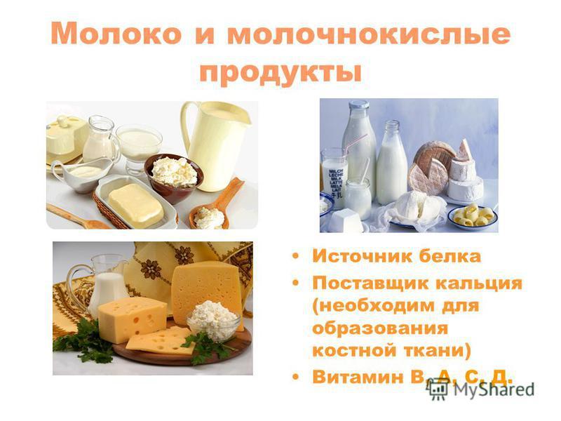 Молоко и молочнокислые продукты Источник белка Поставщик кальция (необходим для образования костной ткани) Витамин В, А, С, Д.