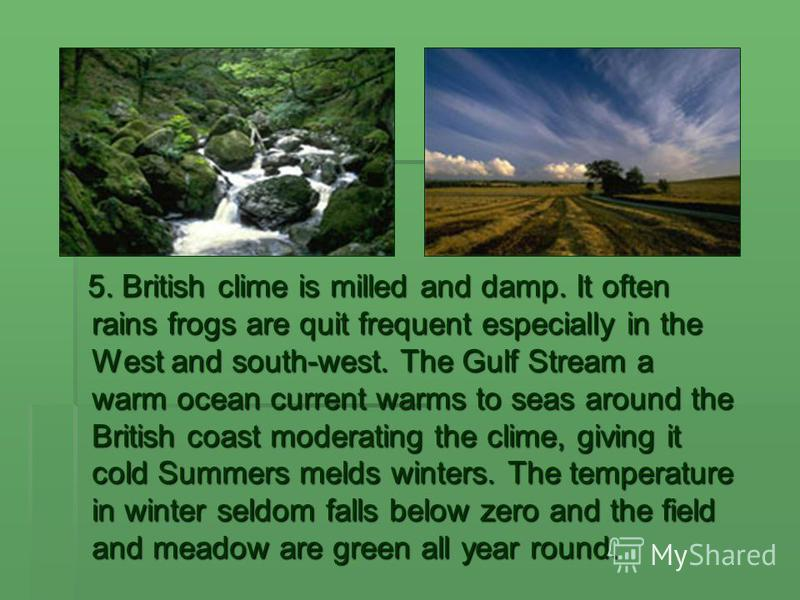 5. British clime is milled and damp. It often rains frogs are quit frequent especially in the West and south-west. The Gulf Stream a warm ocean current warms to seas around the British coast moderating the clime, giving it cold Summers melds winters.