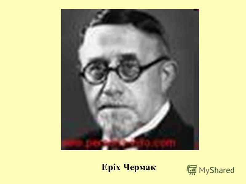 Еріх Чермак
