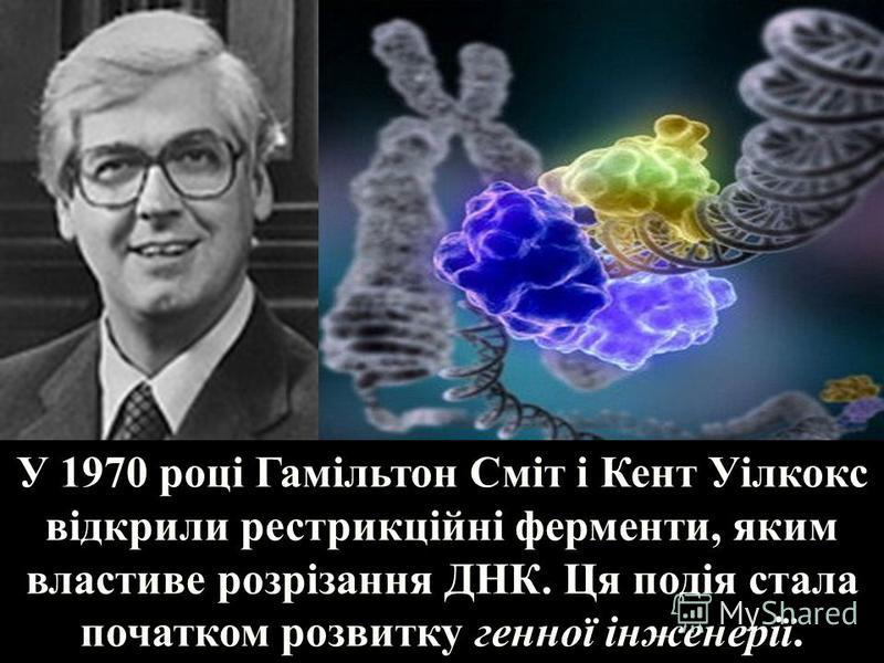 У 1970 році Гамільтон Сміт і Кент Уілкокс відкрили рестрикційні ферменти, яким властиве розрізання ДНК. Ця подія стала початком розвитку генної інженерії.