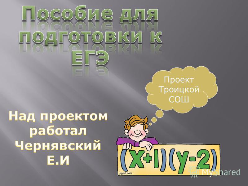 Проект Троицкой СОШ
