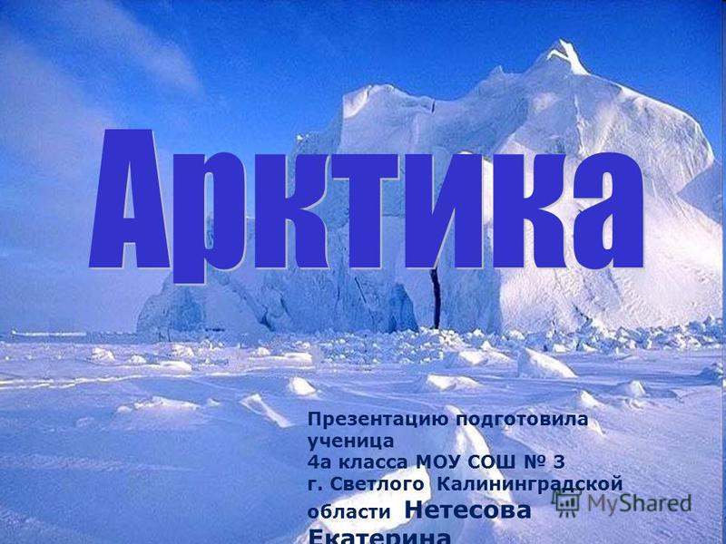 Презентацию подготовила ученица 4 а класса МОУ СОШ 3 г. Светлого Калининградской области Нетесова Екатерина