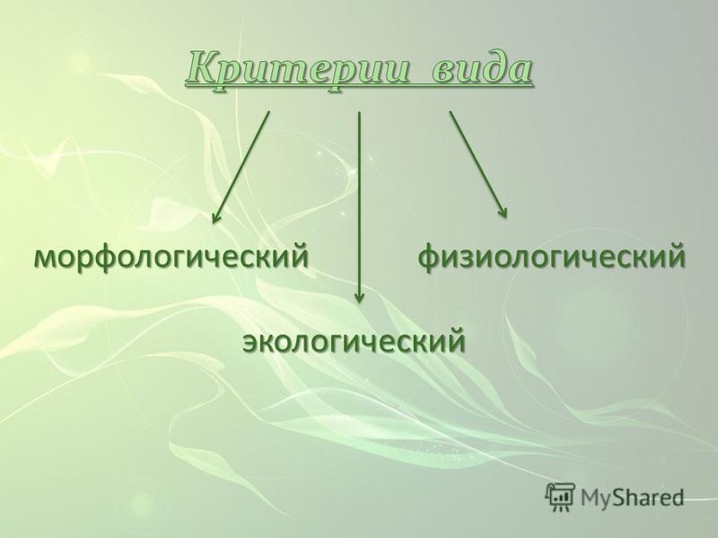 морфологический экологический физиологический