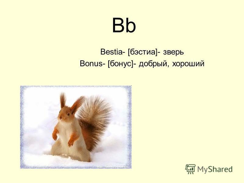 Bb Bestia- [бэстиа]- зверь Bonus- [бонус]- добрый, хороший