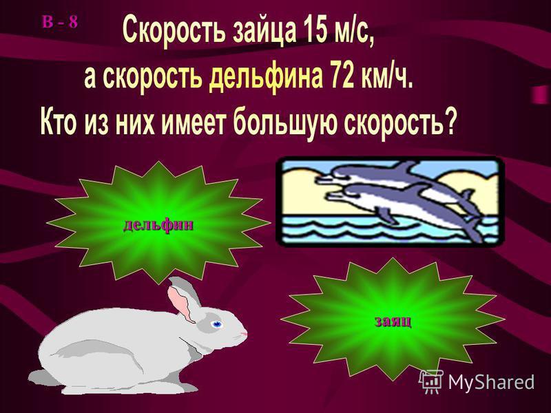 t = s / t = s * t = s * В - 7