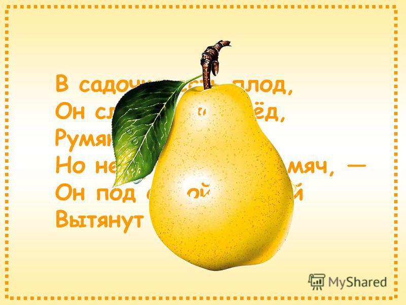 В садочке есть плод, Он сладок, как мёд, Румян, как калач, Но не круглый, как мяч, Он под самой ножкой Вытянут немножко.